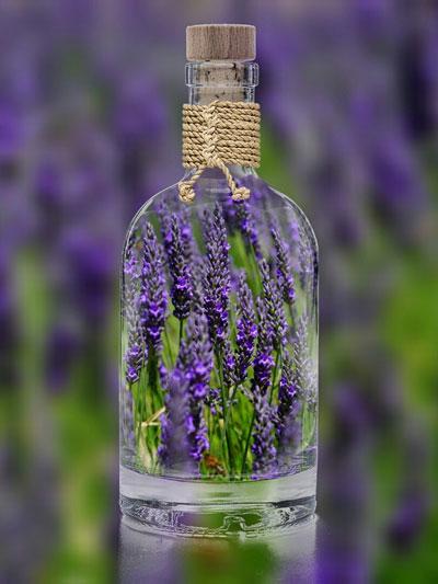 Lavendel, Aromapflege